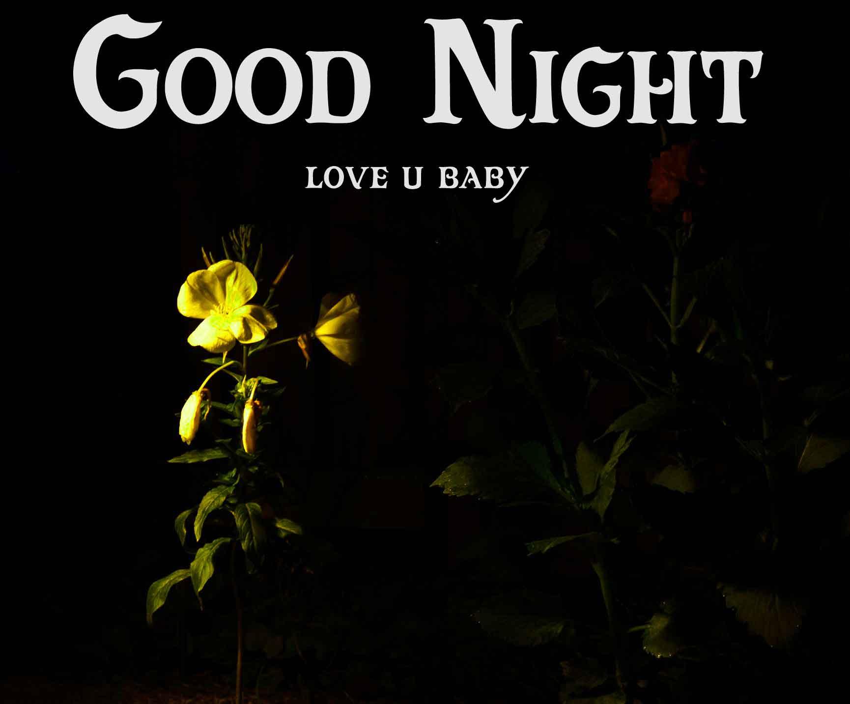 yellow flower Good Night pi