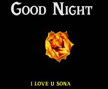 yellow rose Good Night pics