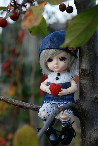 Doll Dp Images pictures for download
