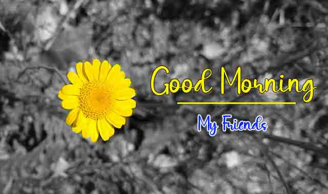 Free Good Morning Images New