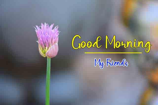 Free HD Good Morning Wallpaper 2021