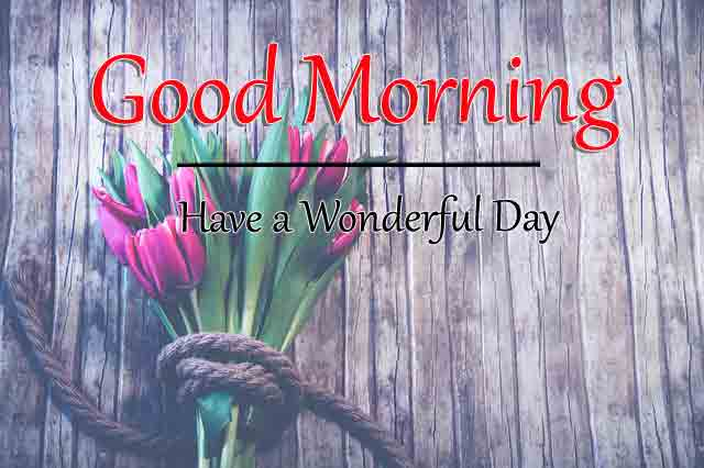 Fresh Good Morning Images Download