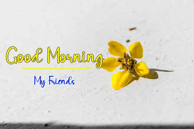 Latest HD Good Morning Images Download