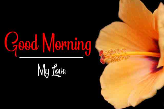 New HD Good Morning Images 1