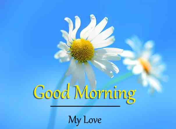 New HD Good Morning Images 2
