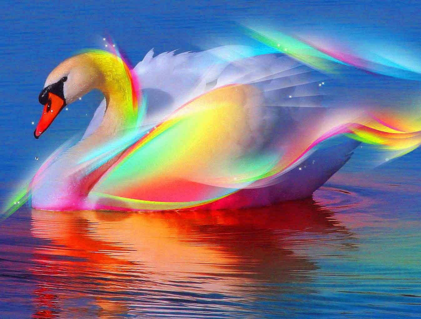 beautiful Whatsapp Dp Profile Images photo free