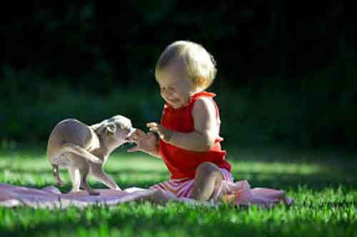 cute baby Whatsapp Dp Images 1
