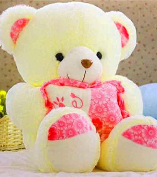 cute teddy Whatsapp Dp Images 1