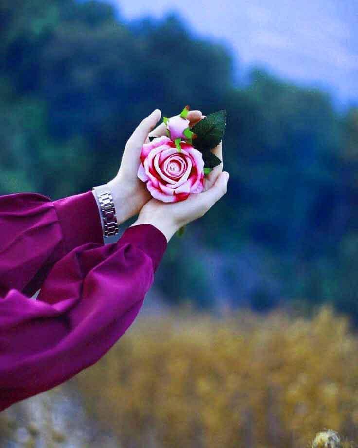 flower Whatsapp Dp Profile Images pics photo hd