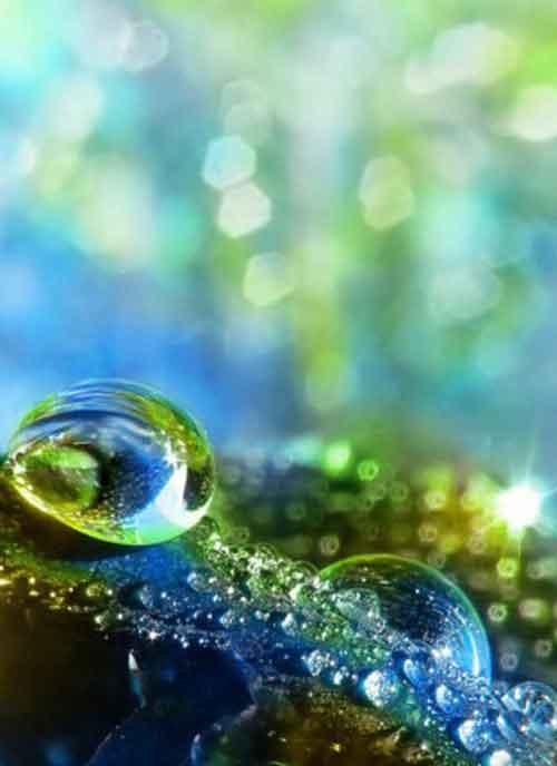 green water Whatsapp Dp Images