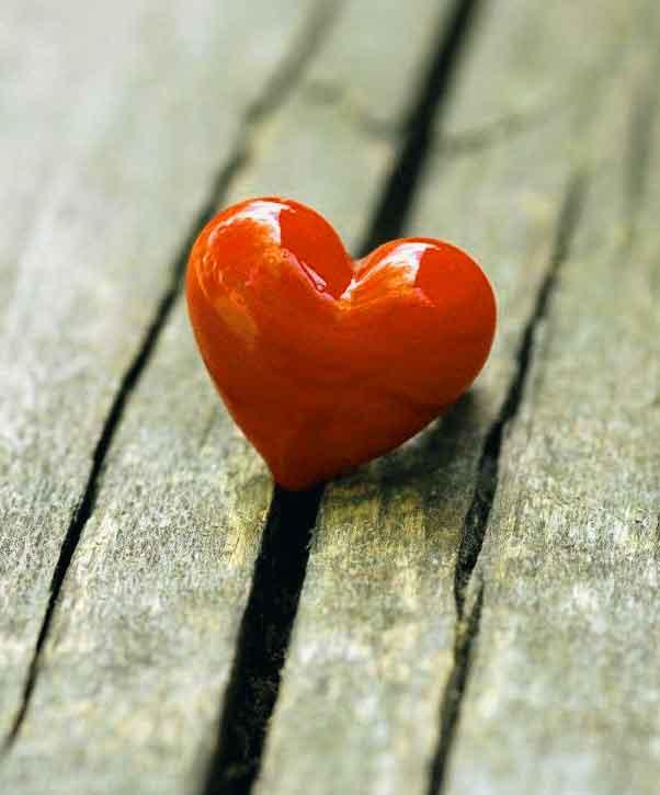 heart Whatsapp Dp Profile Images pics photo hd