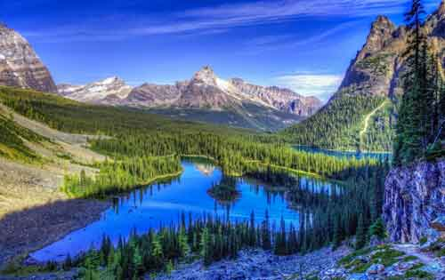 nature free Whatsapp Dp Images
