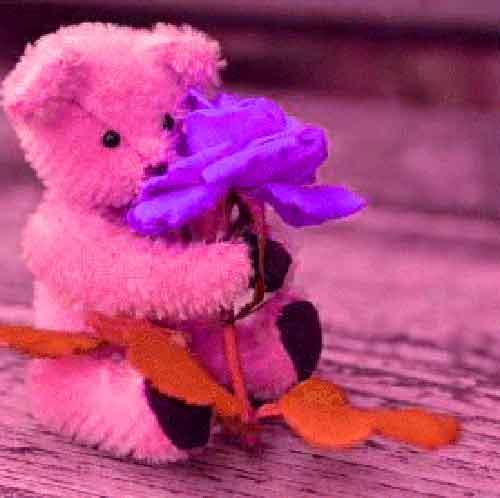 new cute Whatsapp Dp Images