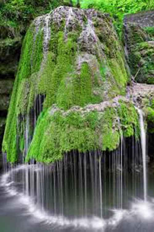 nice natures Whatsapp Dp Images photo for hd