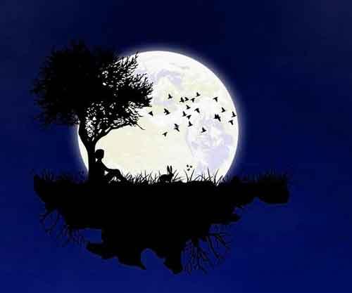 night Whatsapp Dp Images