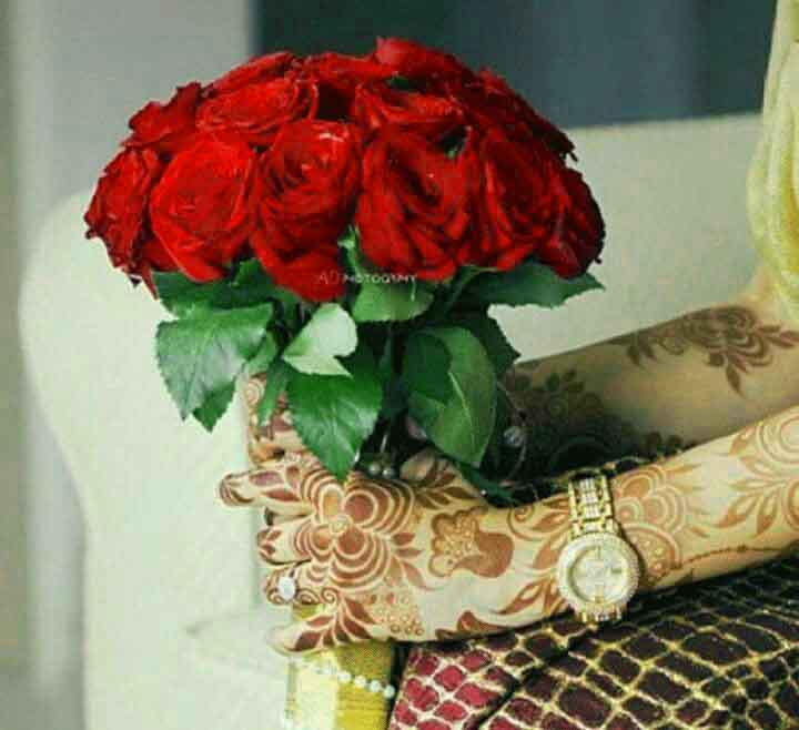 red rose Whatsapp Dp Profile Images 1
