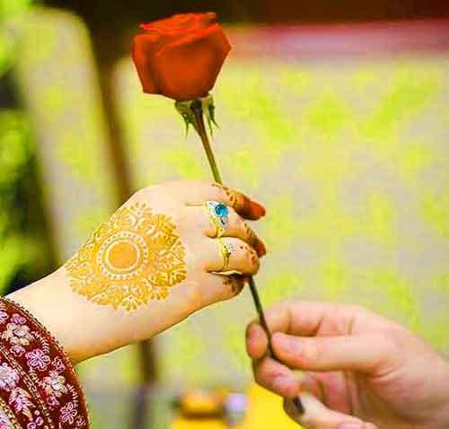 rose in hand whatsapp dp