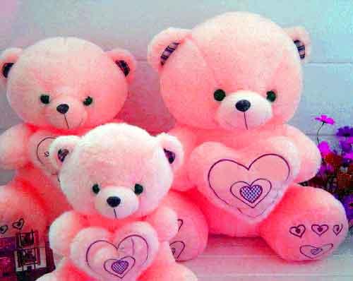 teddy Whatsapp Dp Images best