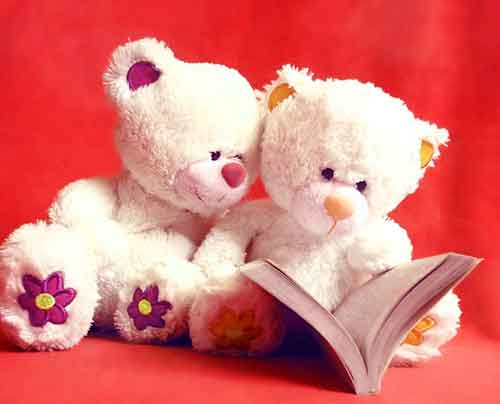 teddy Whatsapp Dp Images for download