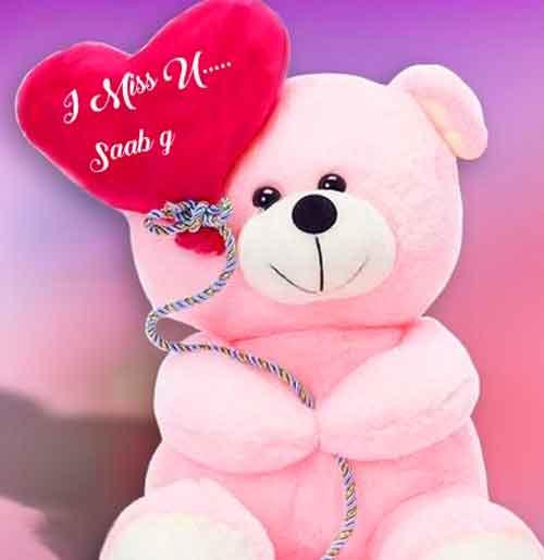 teddy bear Whatsapp Dp Imaes 1