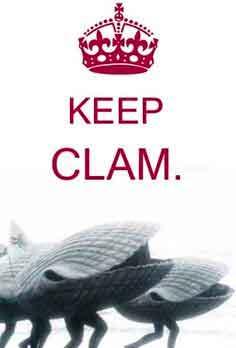 best clam Whatsapp dp photo