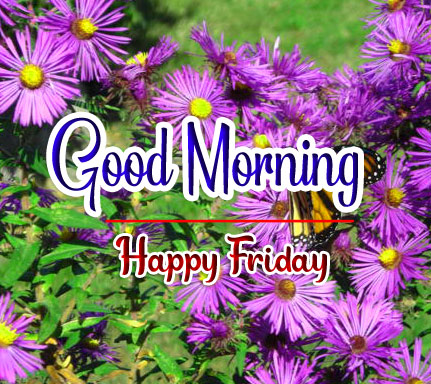 Best Quality friday Good morning Images 3