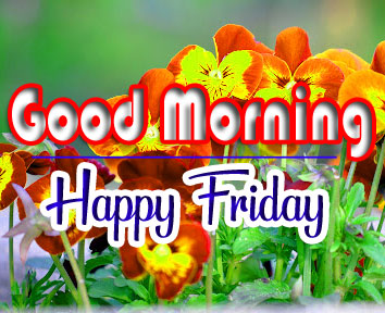 Best Quality friday Good morning Images Free