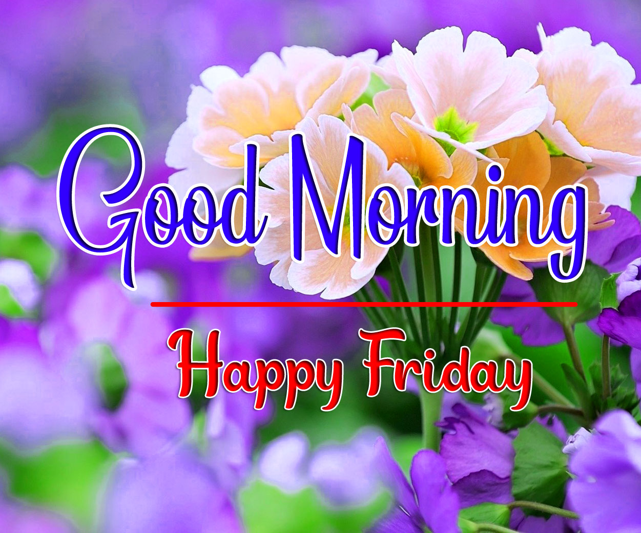Best Top Quality friday Good morning Images