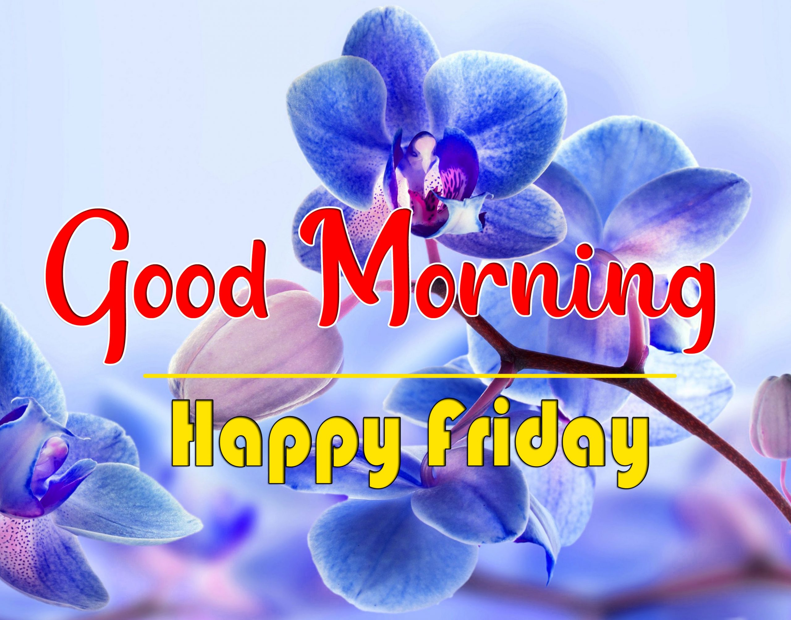 Free HD friday Good morning Wishes Images 2