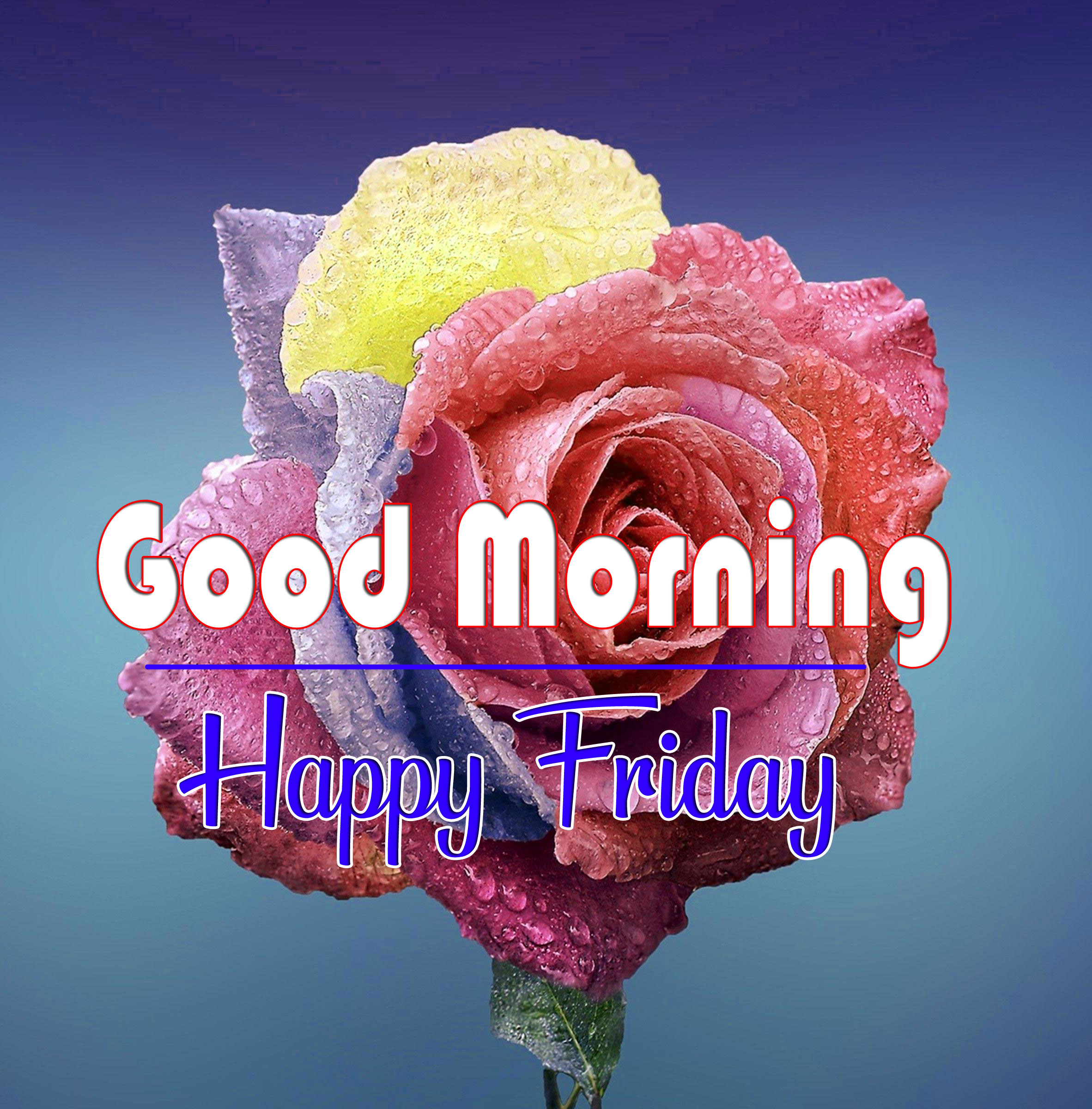 Free HD friday Good morning Wishes Images Download 2
