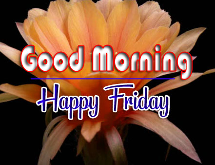 Free HD friday morning Images 3