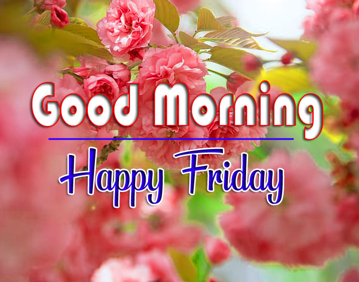 Top Quality friday Good morning Images 2