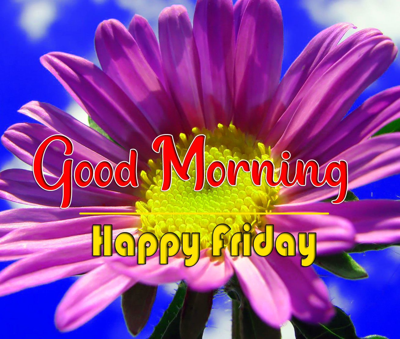 friday Good morning Pics Pictures Downlaod