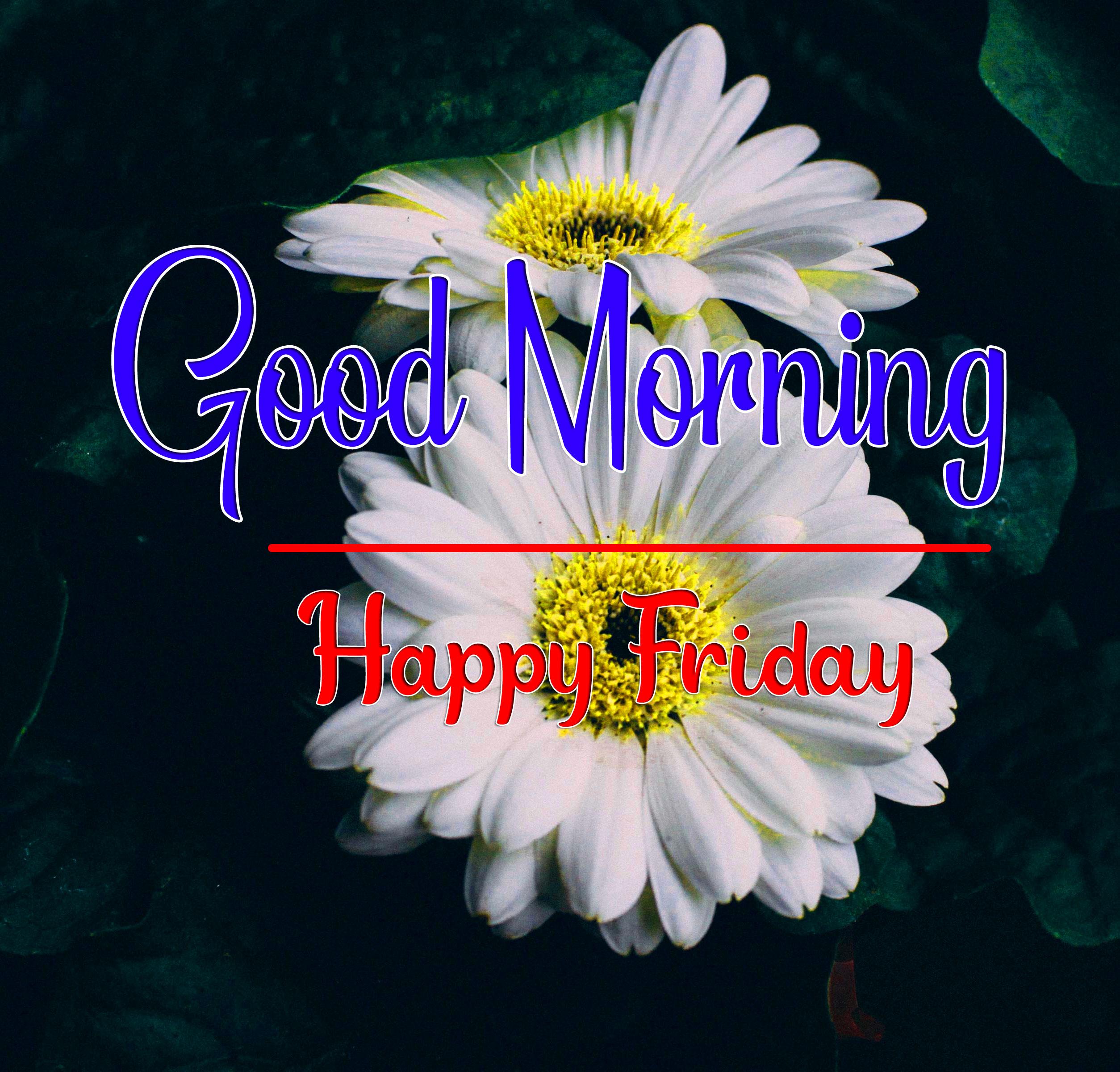 friday Good morning Wishes Pics Downlload