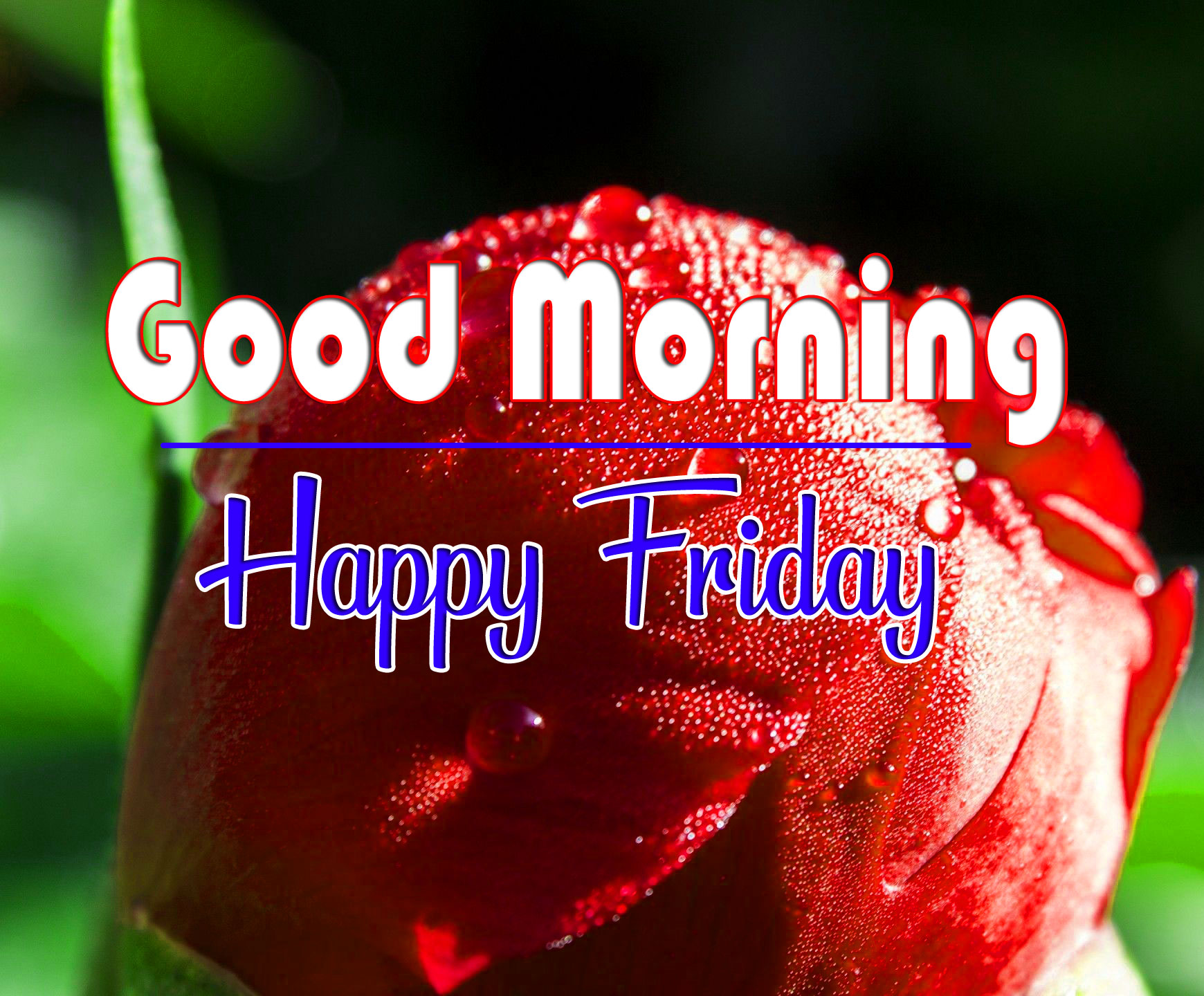 friday Good morning Wishes Wallpaper for Friend