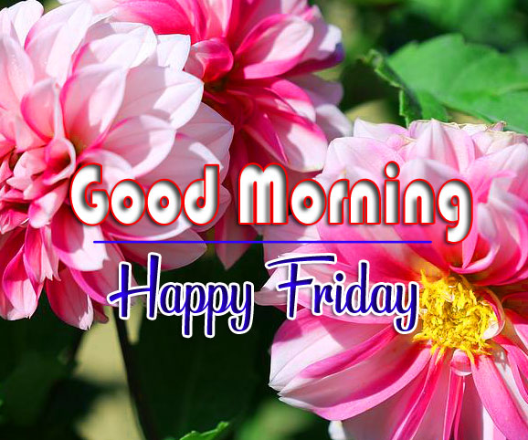 friday morning Pics Download