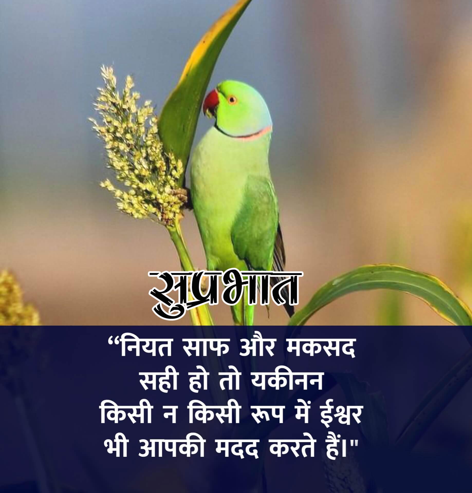 1080p Beautiful Suprabhat Images