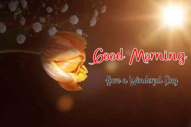 2021 Good Morning All Images