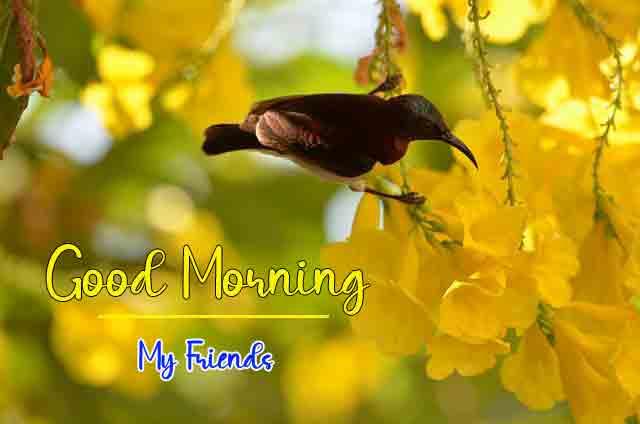2021 Good Morning Dear Images
