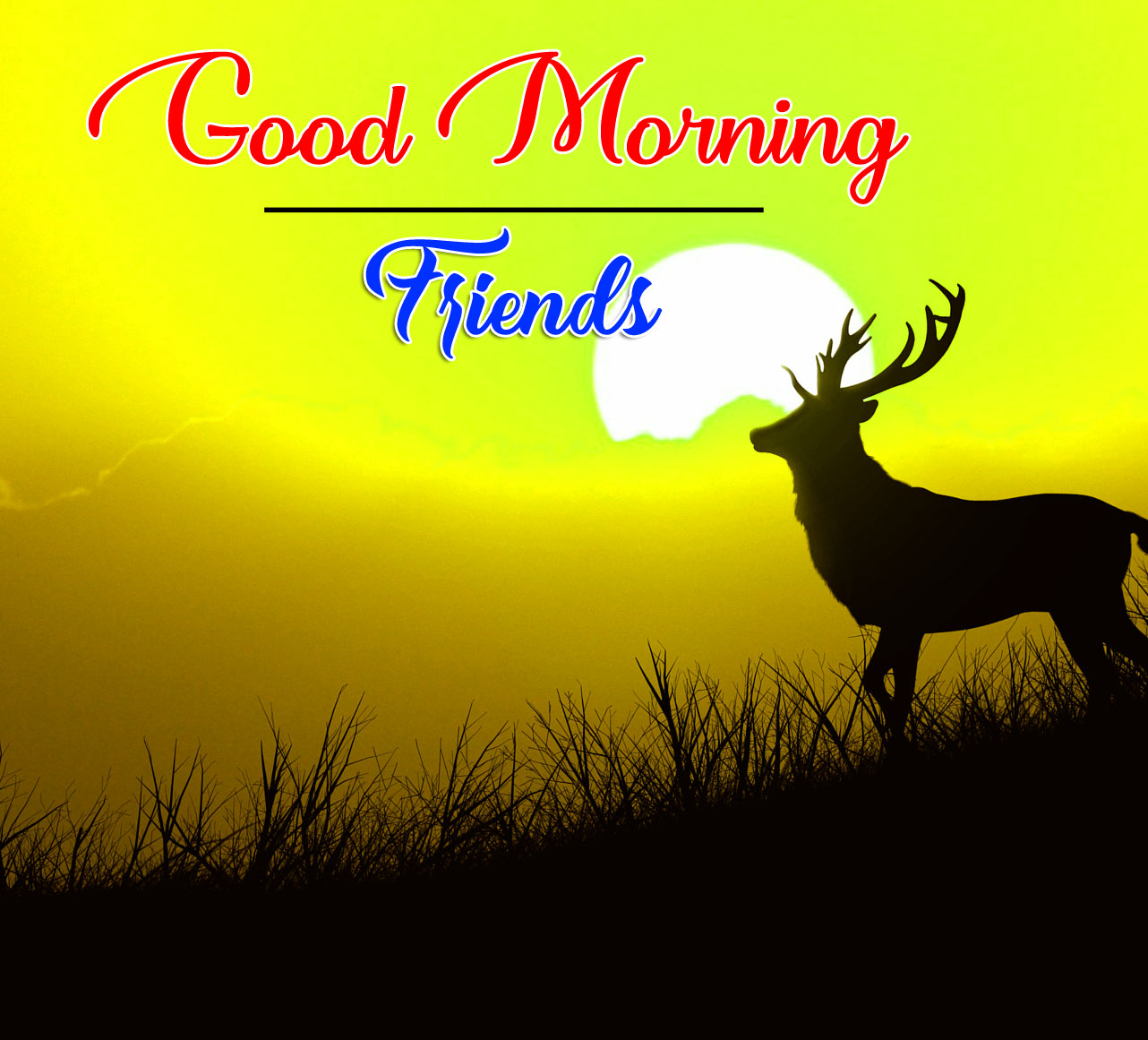 2021 Good Morning Wishes Images Download