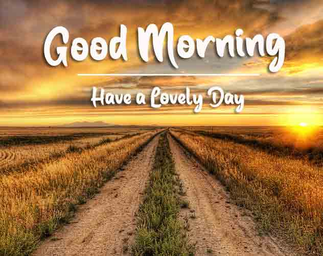 4k good morning Pics Pictures 4