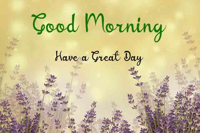 Beautiful Love Good Morning Images