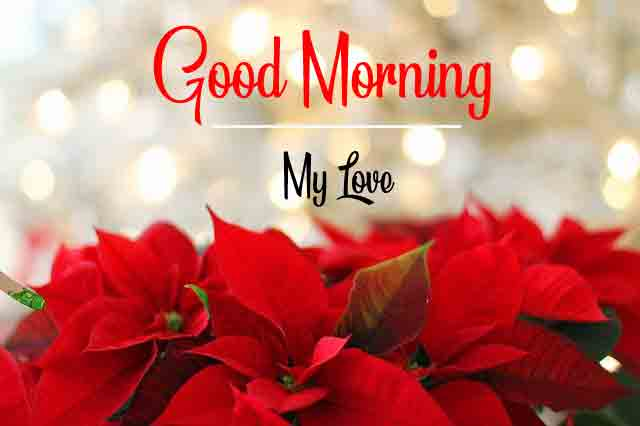 Beautiful Love Good Morning Pics Pictures Free