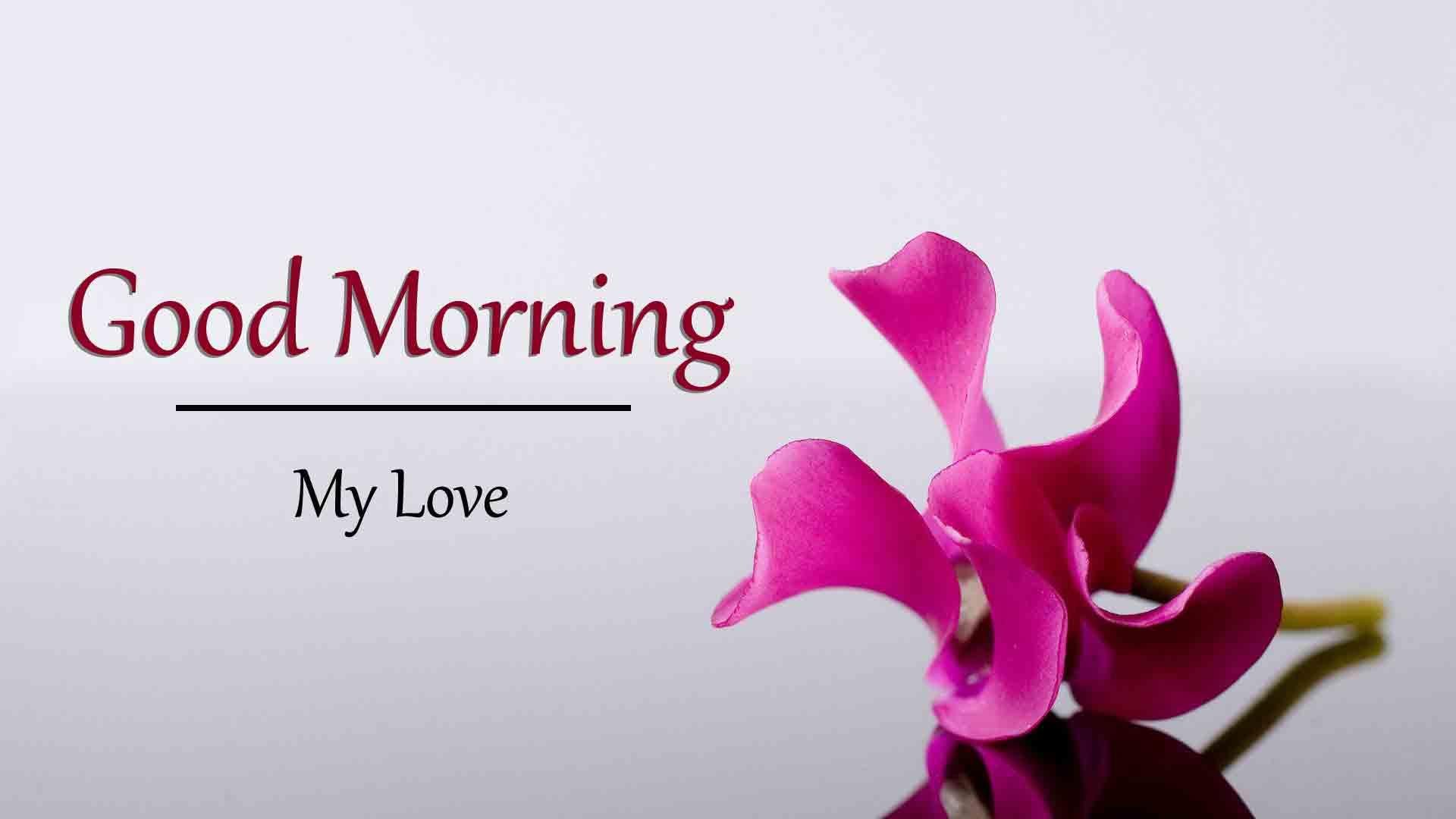 Beautiful Love Good Morning Wallpaper Free 2021