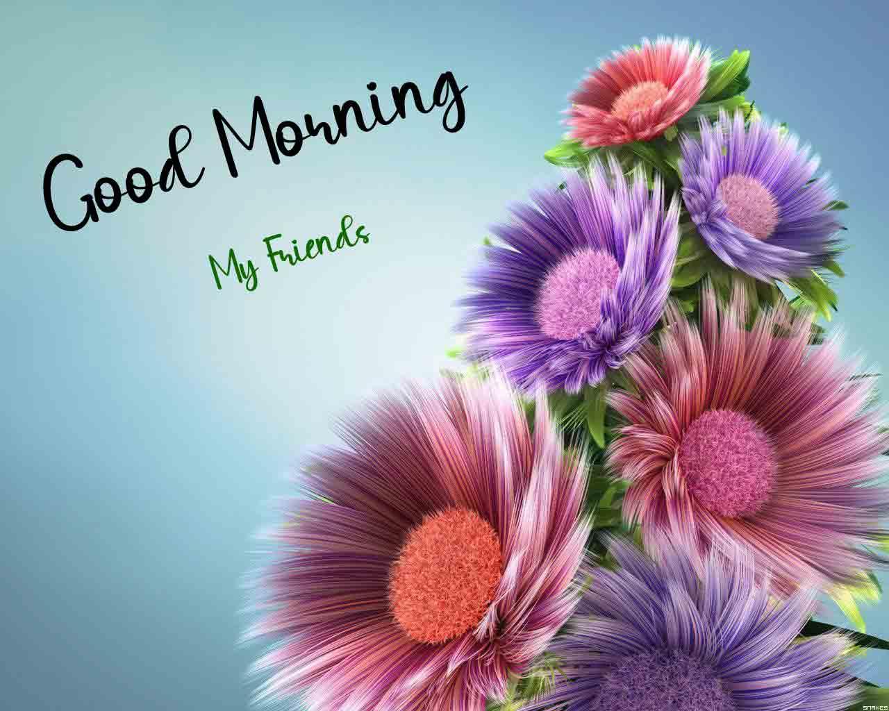 Beautiful Love Good Morning pCIS hd
