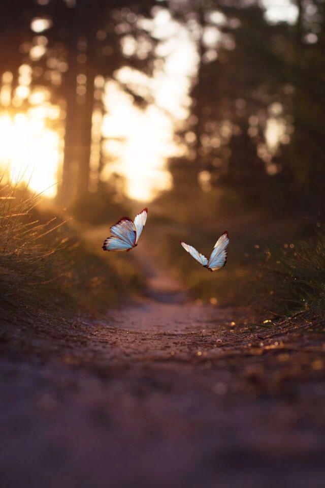 Beautiful Peaceful Whatsapp Dp Images hd 2021 1