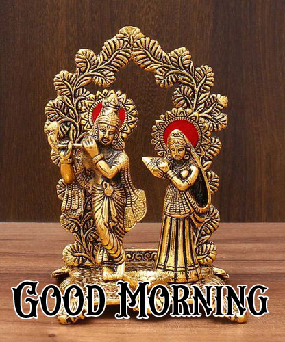Beautiful Radha Krishna Good Morning Images pictures for dp