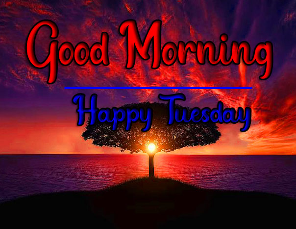 Beautiful Tuesday Good morning Images 1