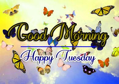 Beautiful Tuesday Good morning Wallpaper Free 2 1