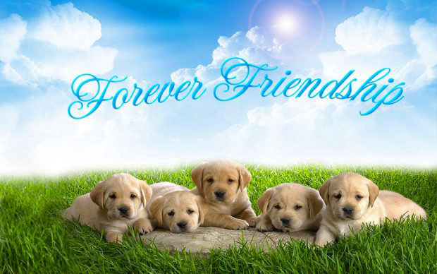 Best Friend Forever Images for whatsapp